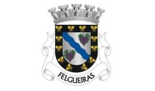 Câmara Municipal de Felgueiras